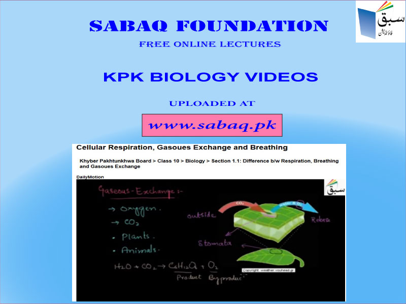 9th &10th Class Biology Lectures of KPK Board | Sabaq Blog
